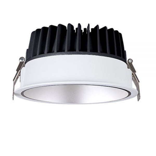 30W LED Waterproof SMD Downlight RR3029