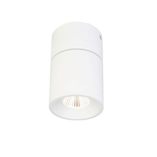 RX-C1006 10W LED Surface mounted downlight
