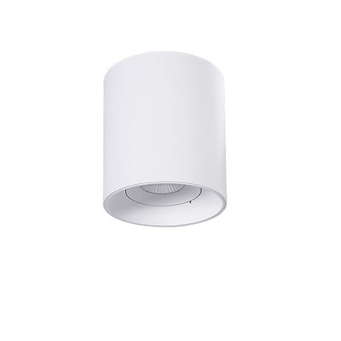 Rx C1029 10w Led Surface Mounted Downlight